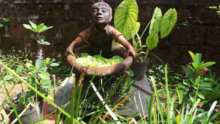 Terracotta Artist Venki Palimar