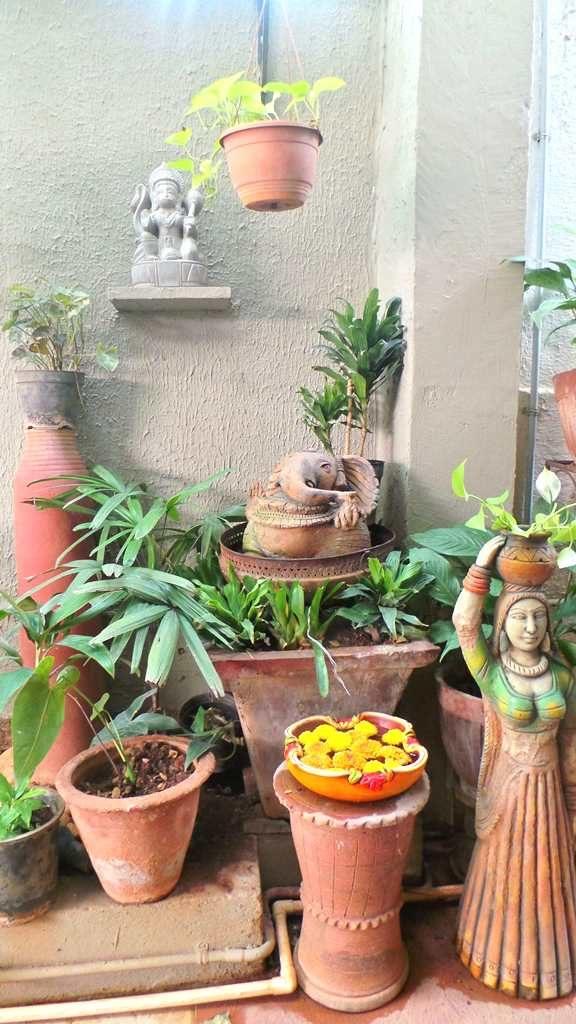 #kinhal #hometour #indianhome #cornerdecor #indiandecor #VasudhaKumar #garden #compoundwall #plantsathome